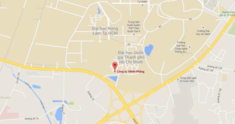 map google